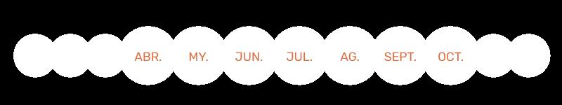 Calendario de uso - Qista