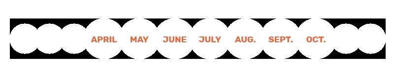 Calendar of use - Qista